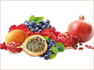 シニア猫の赤いフルーツ