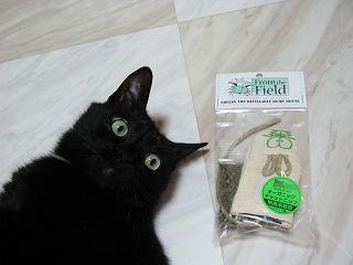 オーガニックキャットニップマウスと黒猫ノア