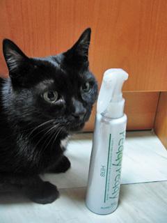 猫ノアと虫除けスプレー