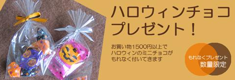 nekomonoチョコレートプレゼント