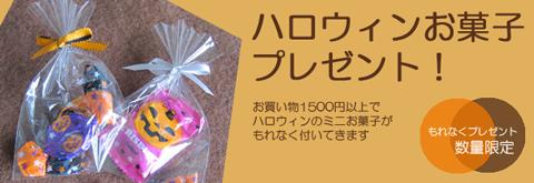 ハロゥインお菓子プレゼント