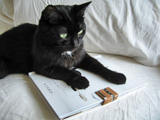 CHATS ネコ大好き!
