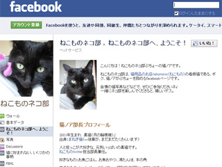 ねこものネコ部facebookページ