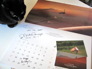 猫ノアと岩合さんのサイン