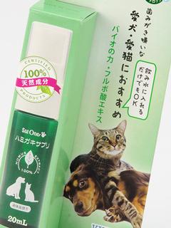 猫のカンタン歯磨き