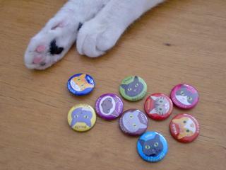 猫の缶バッジ