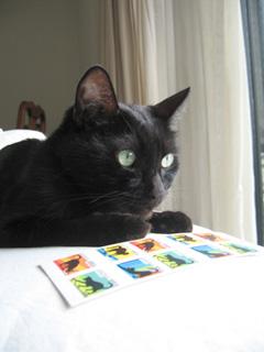 猫ノアとネコ切手