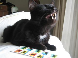 猫ノアとネコ切手3