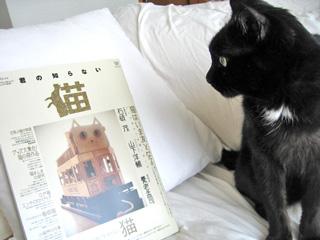 猫ノアと雑誌