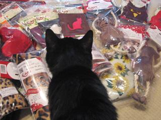 猫ノアとドイツのおもちゃ
